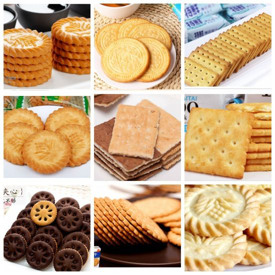 Takno Brand Complete Automatic Small Biscuit Making Machine for Factory pictures & photos
