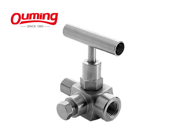 ISO9001 Threaded Ends Stainless Steel Needle Valve pictures & photos