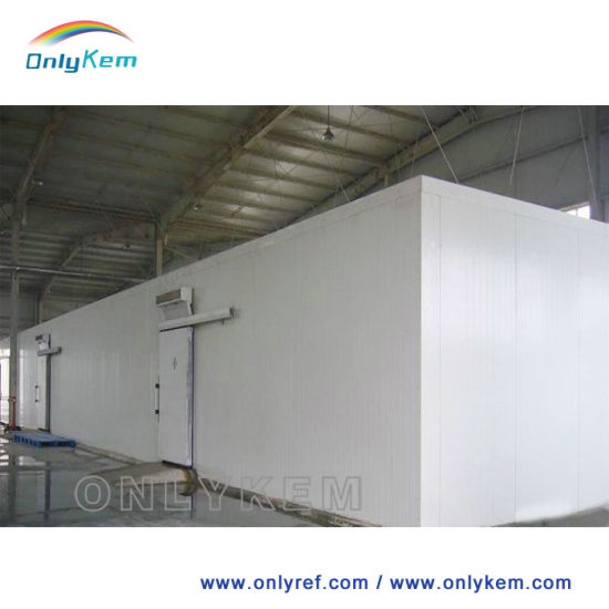 China Deep Freezer Industrial Cold Storage with Condensing