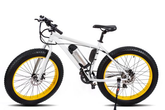 36V 250W/350W Electric Mountain Bike with Pedal Assist PAS pictures & photos