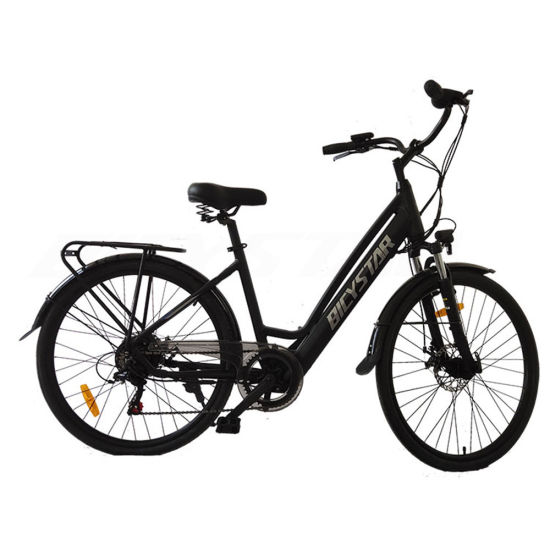 28 Inch Electric Bicycle28 Inch Electric Bicycle MID Drive28 Inch Electric Bike
