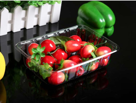 High Quality Disposable Clear Plstic Food Packaging Tray