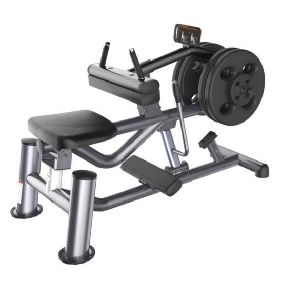 China ce cerficated lifefitness gym equipment calf raise sf