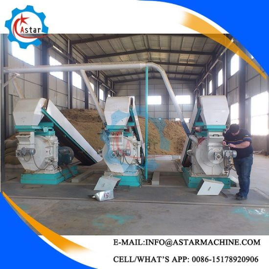China Supplier 0.5-10t/H Complete Wood Pellet Line pictures & photos
