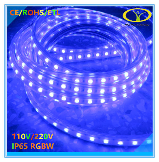 SMD2835 120LED/M IP65 LED Rope Light with ETL Approval pictures & photos