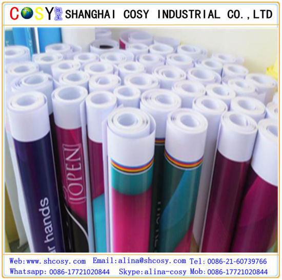 Inkjet PVC High Glossy Vinyl pictures & photos