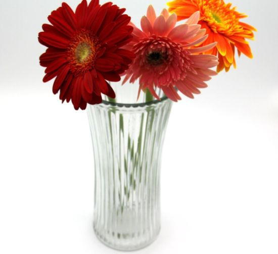 Hot Sell Flower Glass Vase for Home Decor pictures & photos