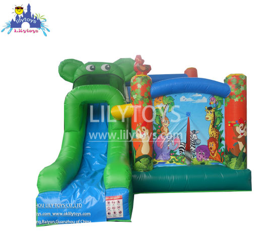 China Commercial Outdoor Inflatable Bouncer Slide Combo