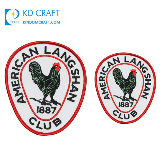 Wholesale Custom School Cloth Fabric Logo Cambridge University 3D Embroidered Woven Badge Patch Textile Army Security Hand Bullion Wire Blazer Embroidery Badge