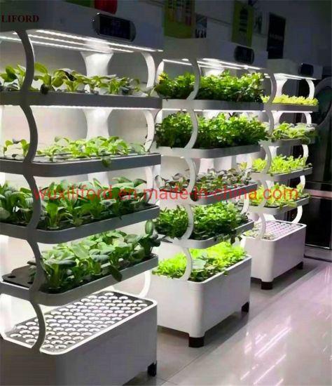Hydroponics System Wholesale Saving-Water Hydroponics Vegetable Planting Machine