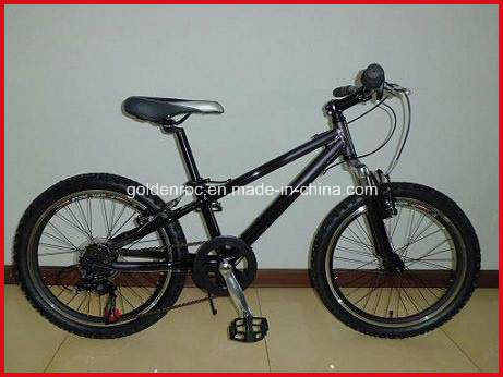 "20"" Alloy Mountain Bike (2016)"