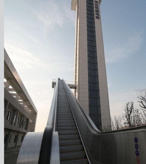 Outside Moving Sidewalk Passenger Elevator Escalator with High Rise
