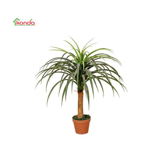 Artificial Plastic Bonsai Tree of Nolina Recurvata, Yucca of Decorative Tree Plants