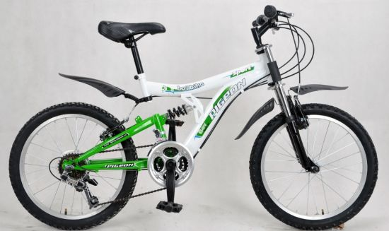 Double Crown Suspension Fork Mountain Bike (FP-MTB-FS035) pictures & photos