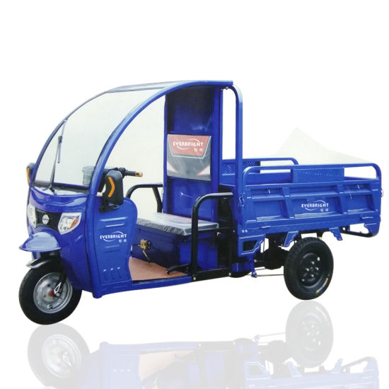 Electric Mini Cargo Trike 80km Range Distance for Farm Transfer Goods