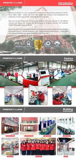 Hotsale Perfect Laser 160260 CO2 Laser Cutting Engraving Machinery pictures & photos