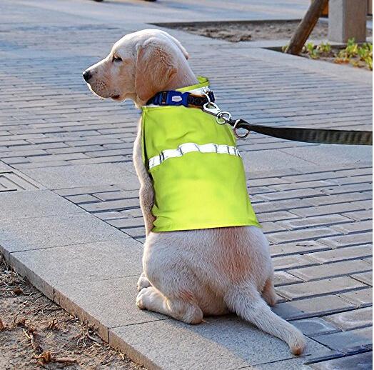 Wholesale Reflective Safety Kevlar Service Life Jacket Pet Dog Vest for Dog