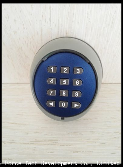 Remote Control Transmitter Keyboard Lock Garage Door Lock pictures & photos