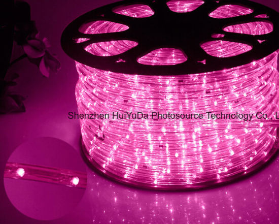 LED Rope Light/Outdoor Light/LED Strip Light/Neon Light/Christmas Light/Holiday Light/Hotel Light/Bar Light Round Two Wires White Color 25LEDs 1.6W/M LED Strip pictures & photos