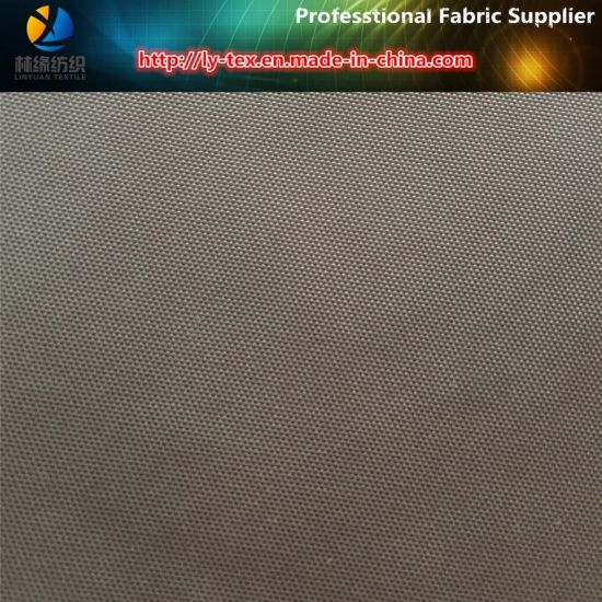 Nylon Fabric, 420d/100t Nylon Oxford, Nylon Oxford Woven Fabric (R0164) pictures & photos