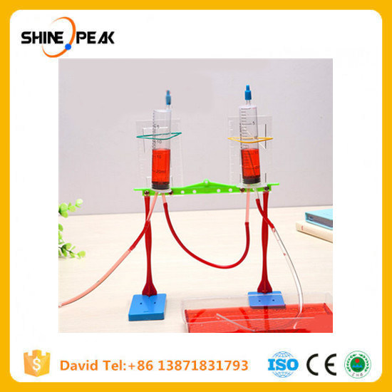1 Set Educational Children's Creative Technology Material DIY Science Physical Experiment Fountain Equipment Baby Kids Toys Gift