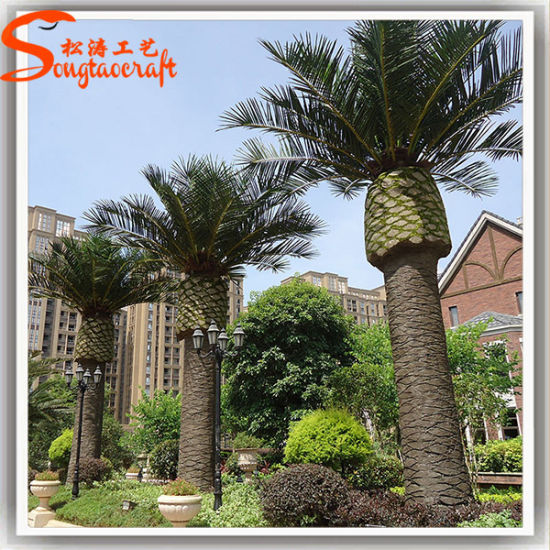 Outdoor Decoration Artificial Fake Plastic Date Palm Tree Pictures Photos