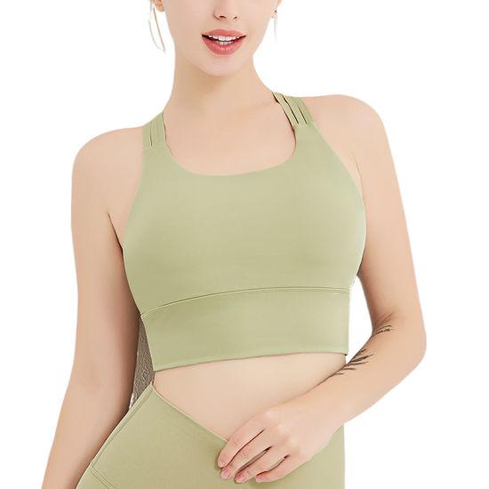 Wholesale High Quality Underwear Plus Size S-XL Seamless Sexy Custom Logo Underwear Comfortable Seamless Lovely Push up Ladies Women Tops Workout Sports Bra