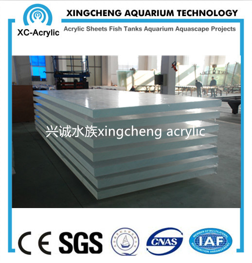Clear Acrylic Glass Wall Swimming Pool Project pictures & photos