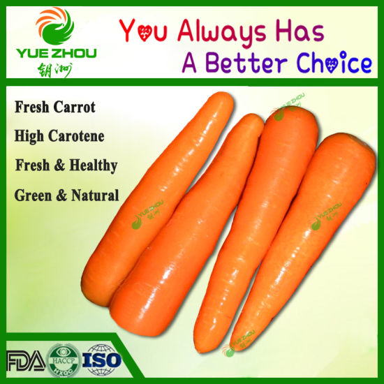 2019 New Crop Fresh Carrot Vegetables with Top Quality pictures & photos