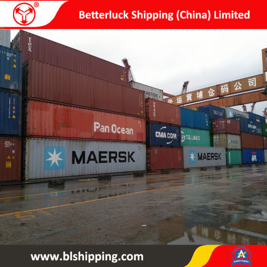 Sea Freight From China to Vostochny/Russia Container Shipping Service pictures & photos