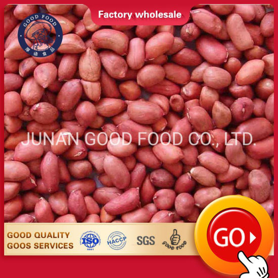 Quality Peanuts / Java and Bold Peanuts for Sale