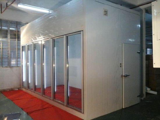 China Walk In Glass Door Display Freezer With Remote Compressor