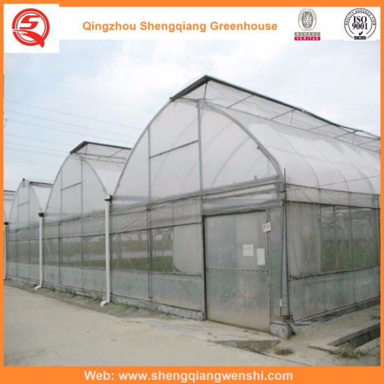 Agriculture/Commercial/Garden Plastic Greenhouse with Hydroponic Systems