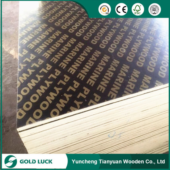 1250 X 2500mm/1220 X 2440mm Film Faced Marine Plywood for Building pictures & photos