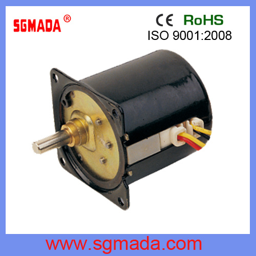 Brushless DC AC High Power Electric Gear Single Phase Motor