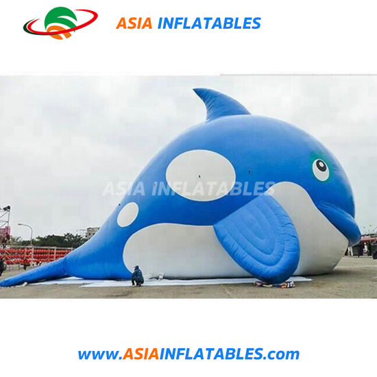 Hot Sale Marine Animal Decoration Giant Inflatable Shark pictures & photos