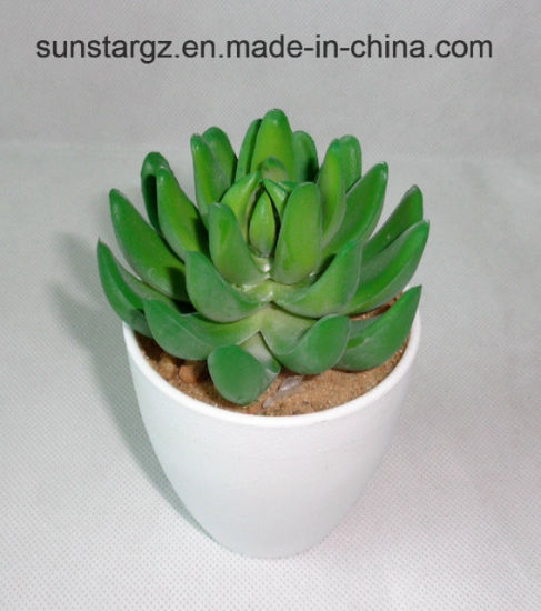 china pe succulent artificial plant w/white pot for home decoration