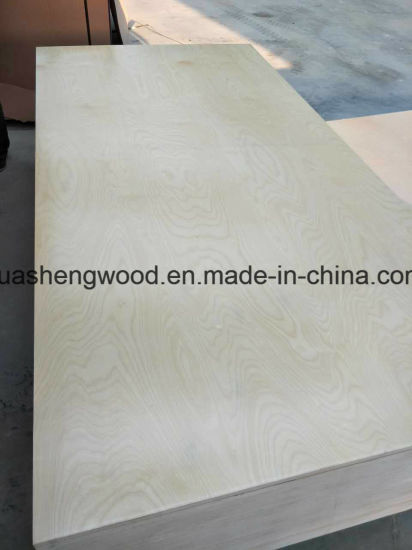 Carb Certificate UV White Birch Plywood For USA, Canada/America Market