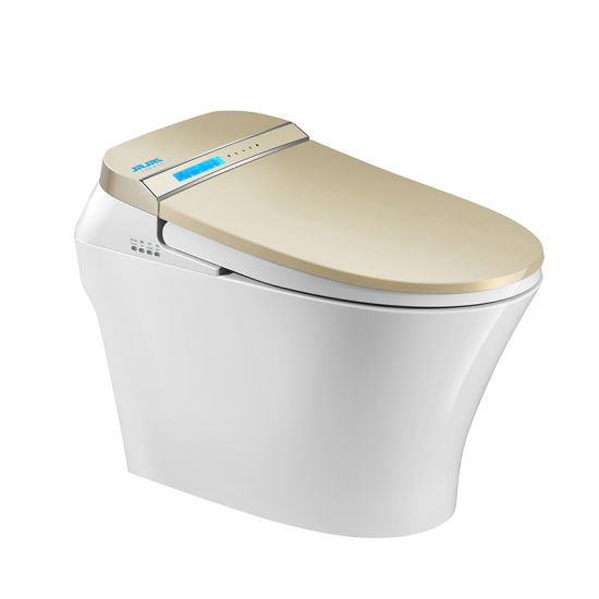 Magnificent China Malaysia Japanese Toilet Bowl With Heat China Smart Machost Co Dining Chair Design Ideas Machostcouk