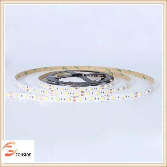 SMD 5050 12V/24V LED Strip
