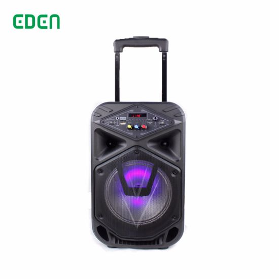 Oudoor Portable Wireless Professional Rechargeable DJ Karaoke Sound Box Trolley Bluetooth PA Speaker with LED Light ED-810