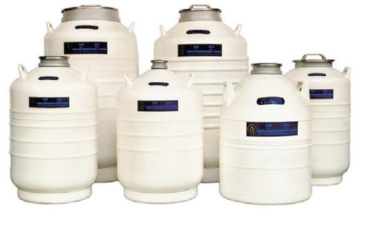 Nitrogen Tank with Very High Quality (KD1004) pictures & photos