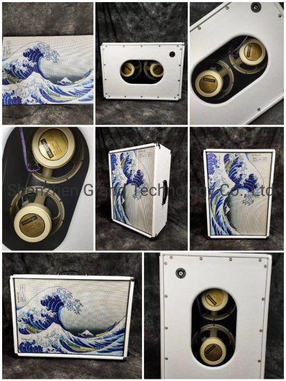 Custom Grand Guitar Amplifier Speaker Cabinet