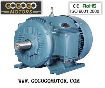 Three Phase Electric Motor Ye2-180m-2 (0.75KW-400KW)