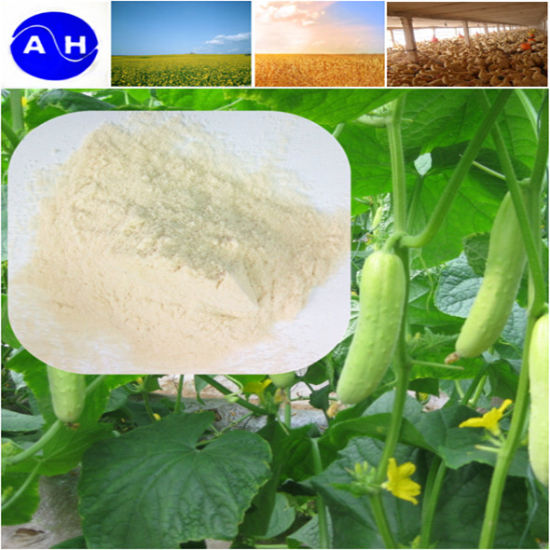 Organic Potassium Amino Acid Chelate Fertilizer High Organic Nitrogen Potassium pictures & photos