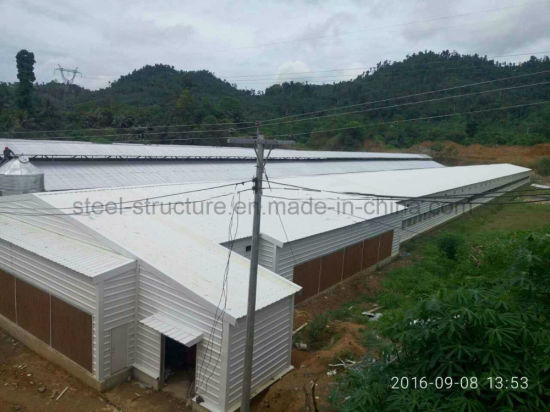 Light Steel Structure Poultry Chicken Shed in Philippines