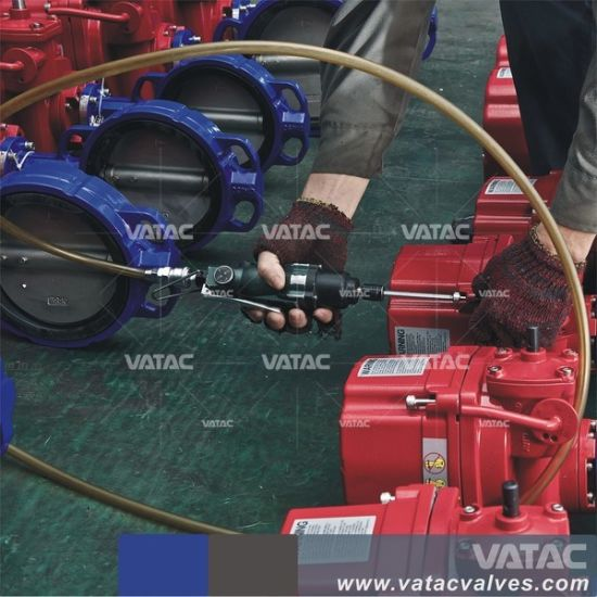 Pneumatic Actuated Double Flanged&Wafer/Lug Butterfly Valve pictures & photos