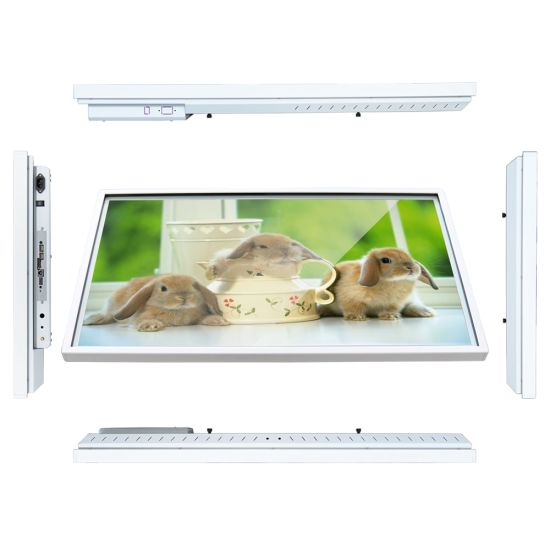 50 Inch Android LCD Advertising Kiosk Rk3288 Tablet PC Touch Screen