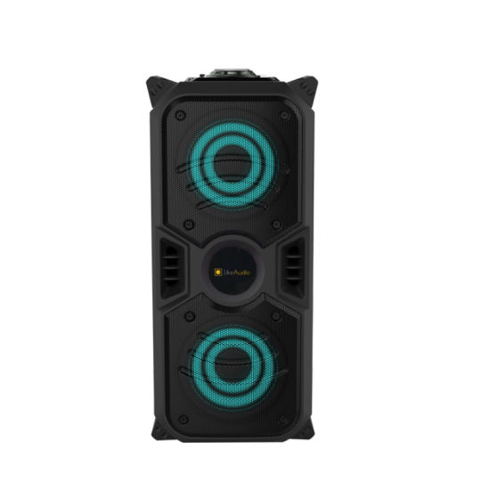 Dual 6.5 Inch PT-640m OEM Guangzhou Portable Speaker with Light
