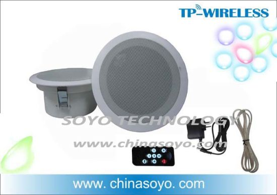 China Digital Wireless Ceiling Speakers For Multi Rooms